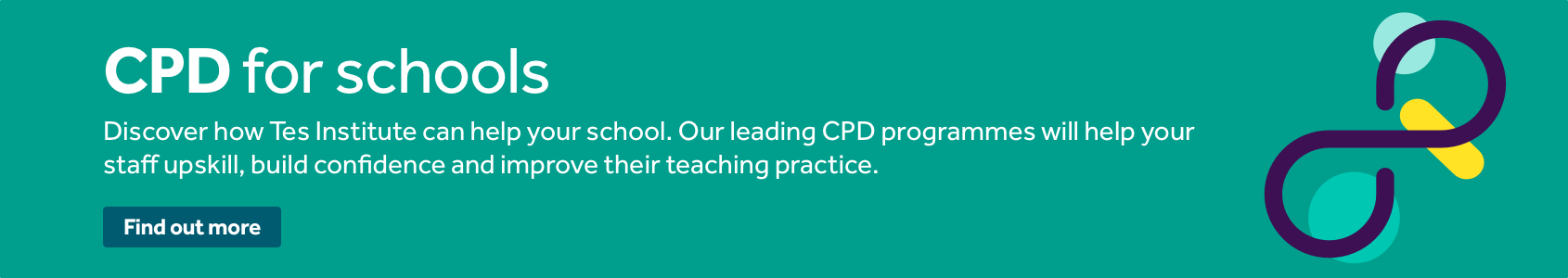Tes Institue CPD for Schools