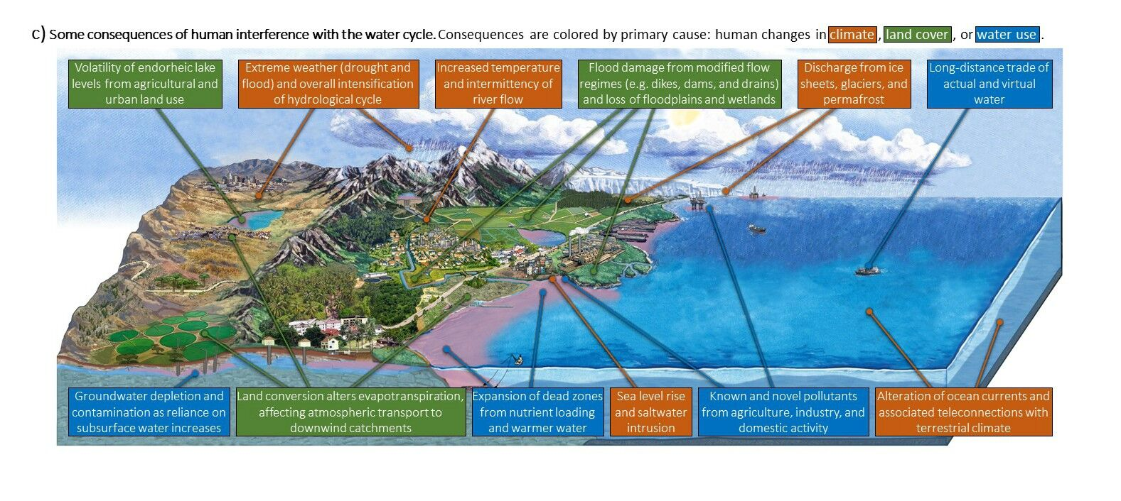 Updated water cycle diagram