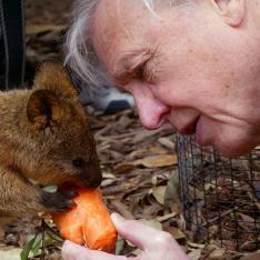 David Attenborough, feeding a carrot to a baby wallaby
