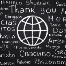 study languages