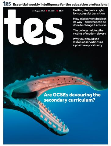 Tes - 24 August 2018 cover image