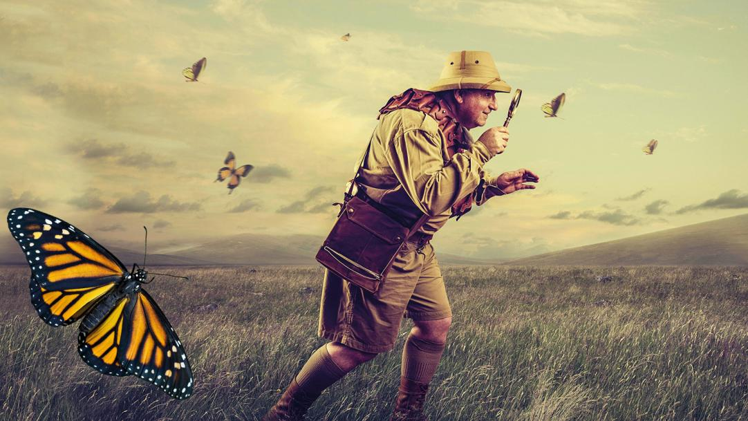 Explorer with magnifying glass surrounded by butterflies - observations in class
