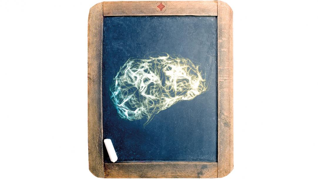 Will neuroscience transform teaching in colleges?