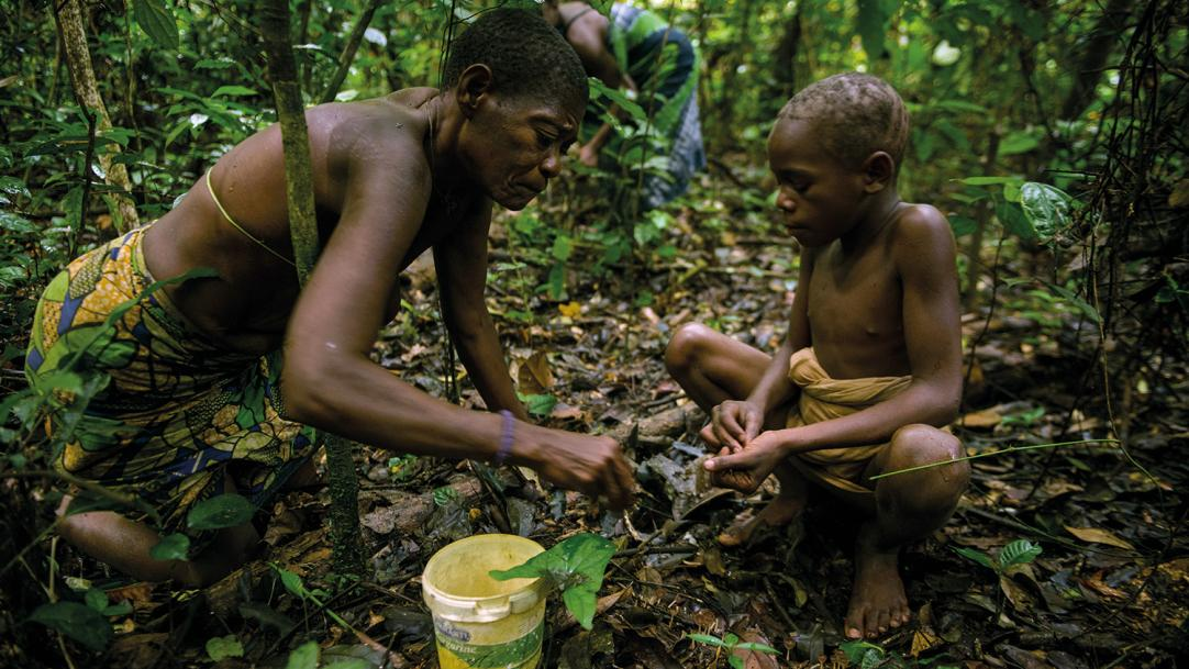 What hunter-gatherers can teach us about learning