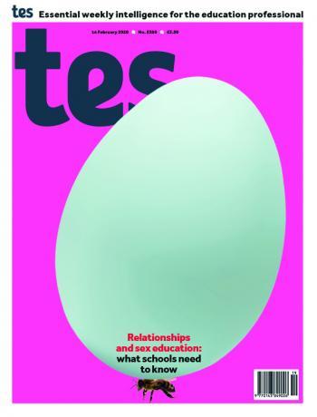 Tes England cover 14/02/20