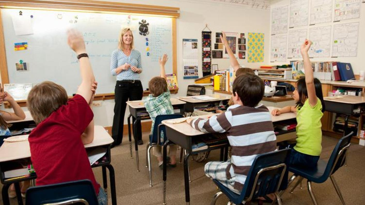The DfE has told teaching schools about its plans to reform the school improvement system.