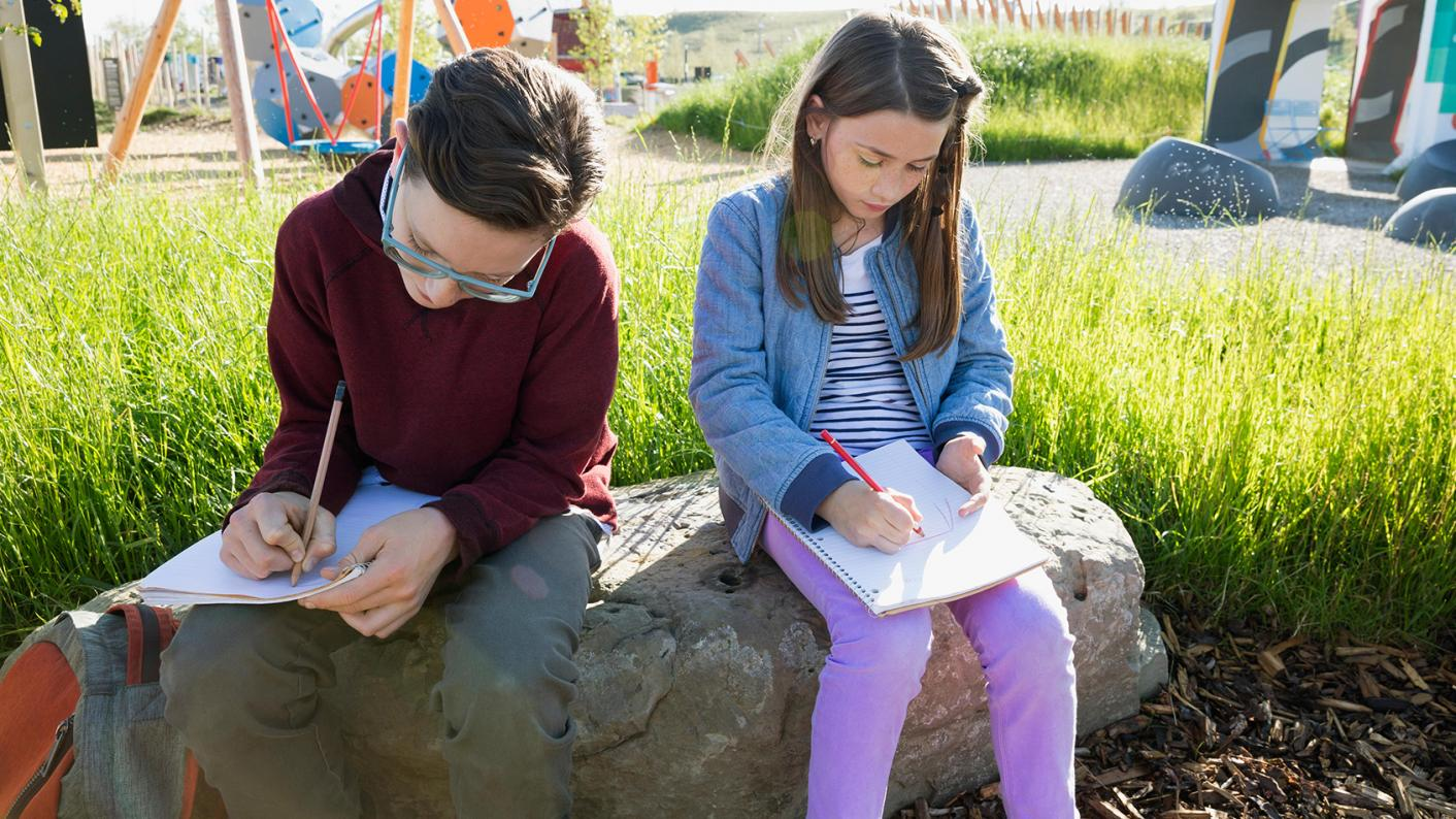 Pedagogy: What are the benefits of peer assessment?