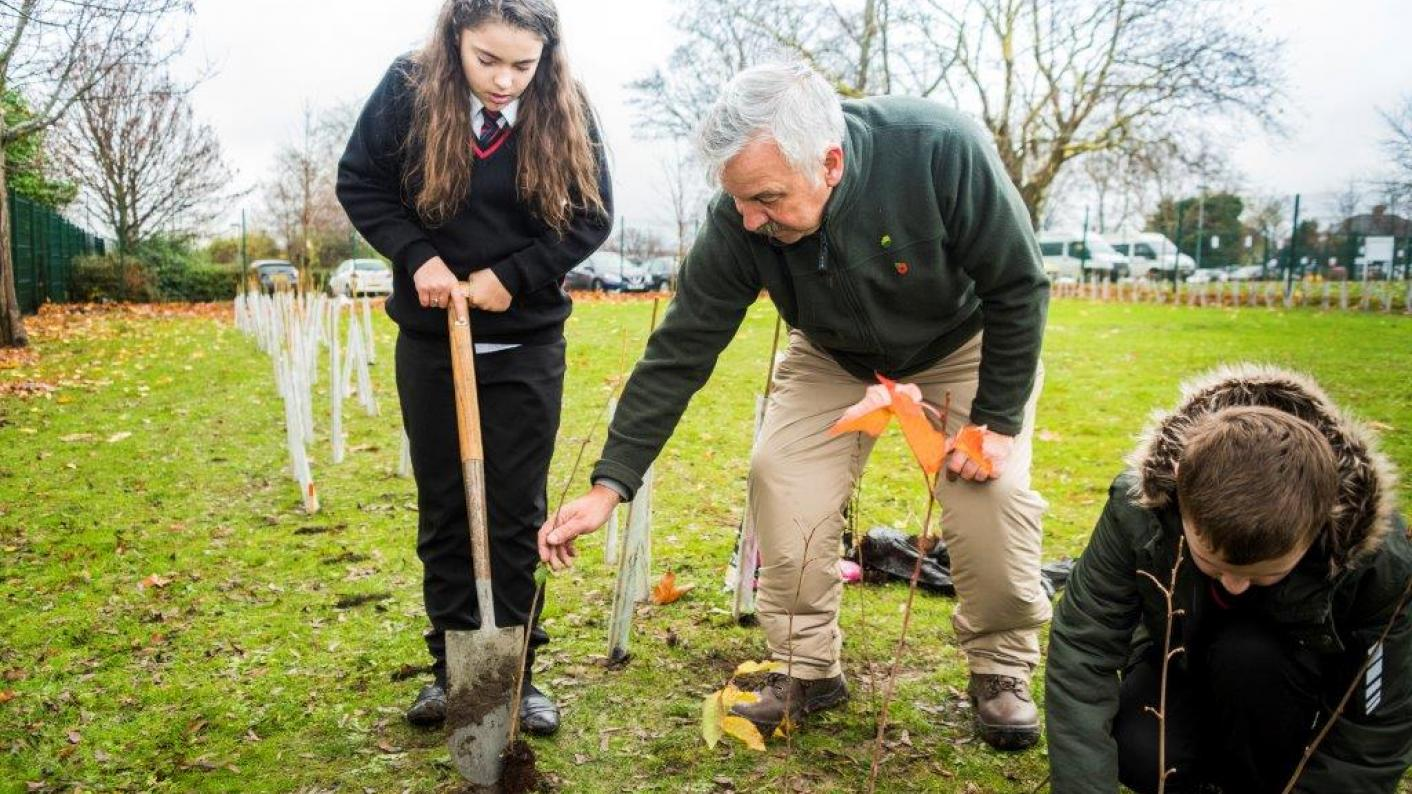 Why every school should be planting trees - and how to do it