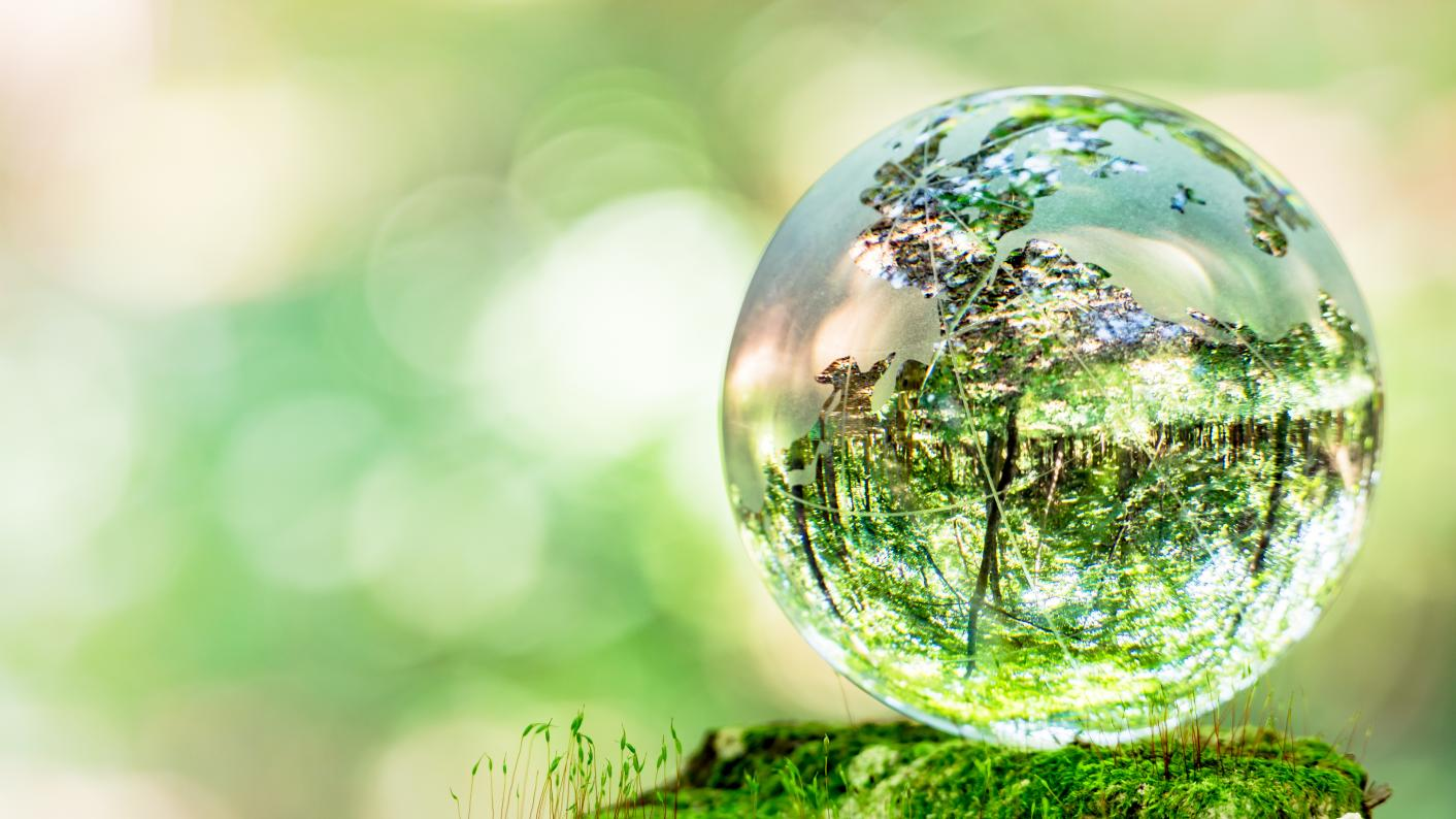Ecology & Ecosystems: Vital Connections In The World Around Us