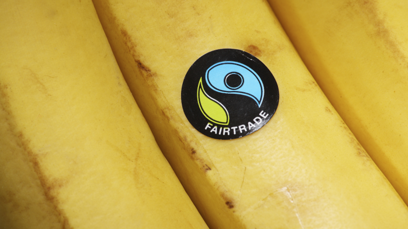 Fairtrade Label On A Banana, Representing Fairtrade Fortnight & Ways For EYFS, Primary & Secondary Students To Investigate It