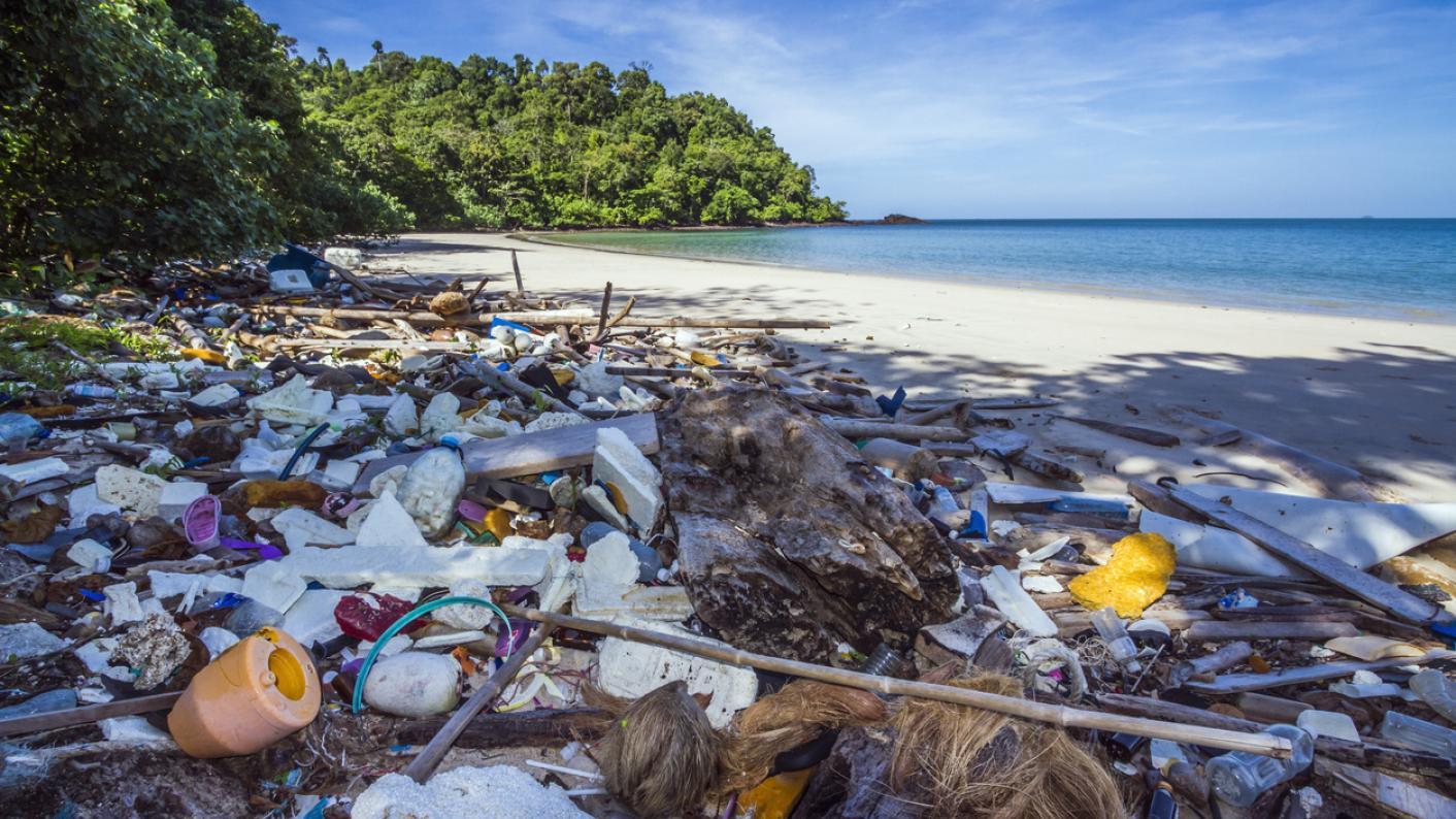 Plastic Pollution, Single-use Plastic